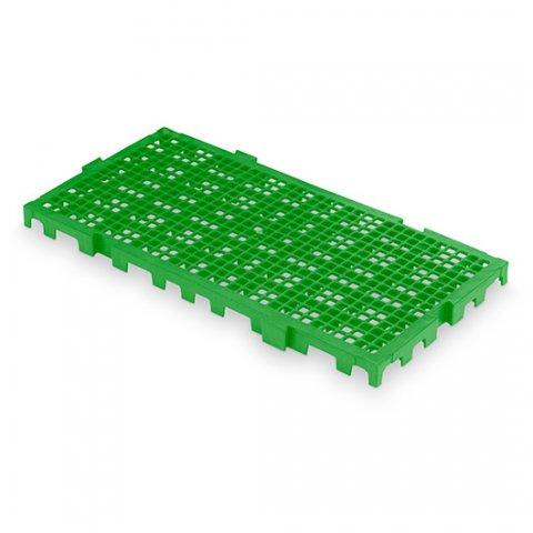 25×50-verde